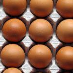 Huevos de dos yemas